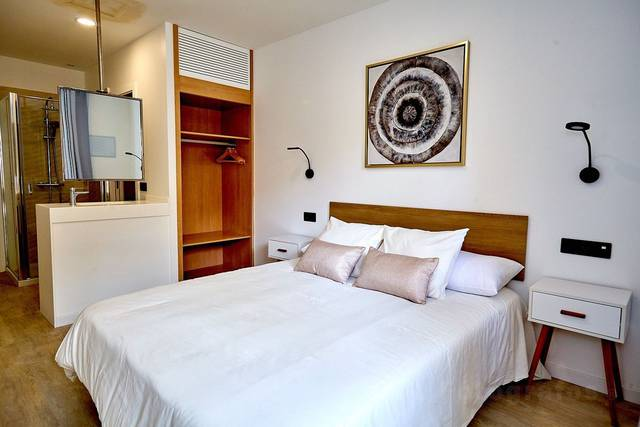Double apartment  alegria barranco arona