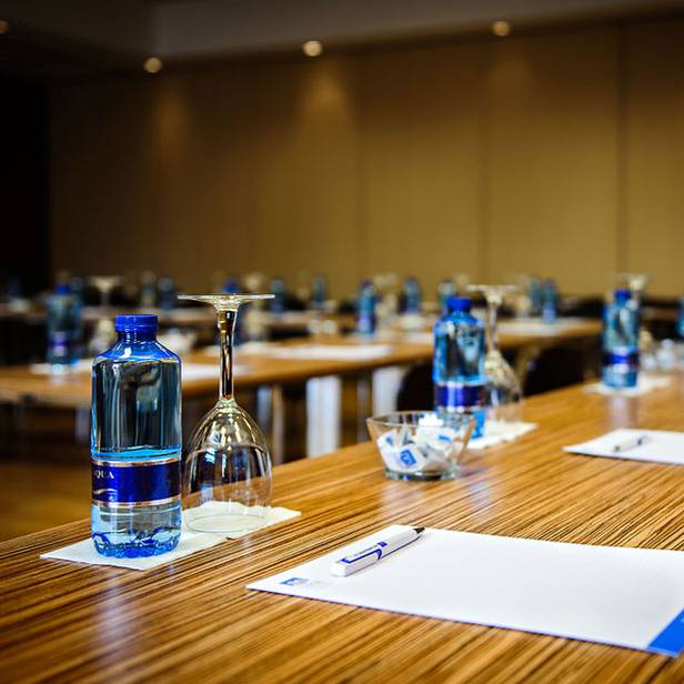 CONFERENCES Alegria Hotels